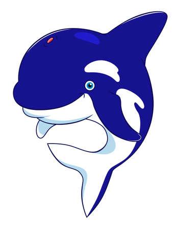 aquatic mammal: cartoon orca