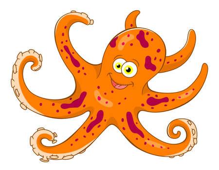 cartoon octopus: cartoon octopus
