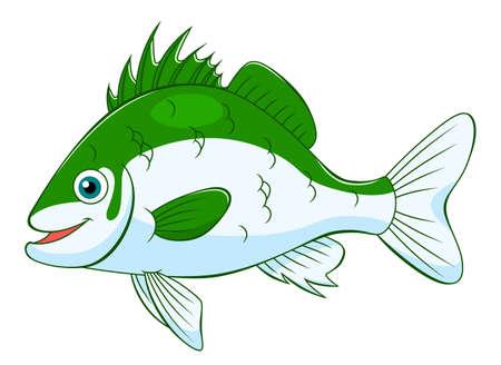 cute cartoon: Cartoon cute seabass