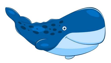 aquatic mammal: Cartoon cute cachalot