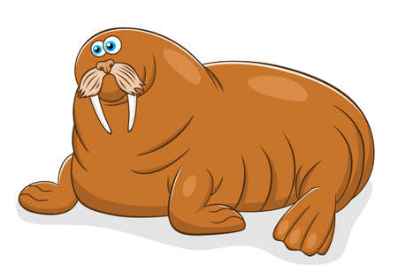 cute cartoon: Cartoon cute walrus Illustration