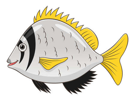 cute cartoon: Cartoon cute twobar seabream Illustration