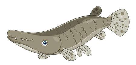 Cartoon cute alligator gar