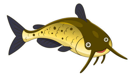 sheatfish: Cartoon cute channel catfish
