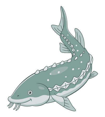 Cartoon cute white sturgeon