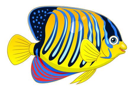 Cartoon cute regal angelfish Illustration