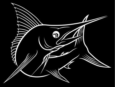 Black and white marlin fish
