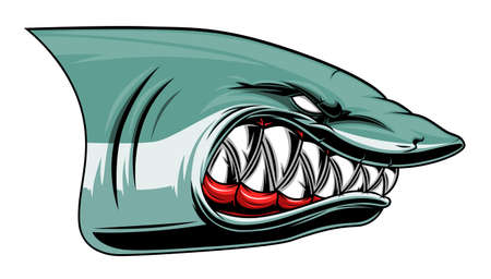 Angry shark colored head 矢量图像