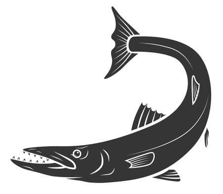 Beautiful monochrome barracuda fish Zdjęcie Seryjne - 124523614