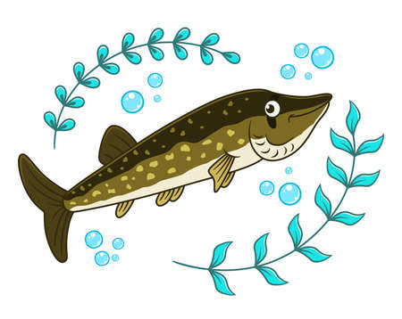 Cartoon pike and seaweed with air bubbles