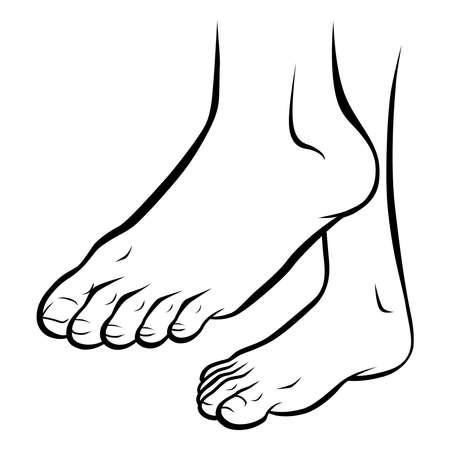Ilustración de pies sanos de arte lineal Ilustración de vector