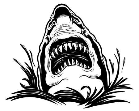 Gefährlicher gruseliger Hai in den Wellen
