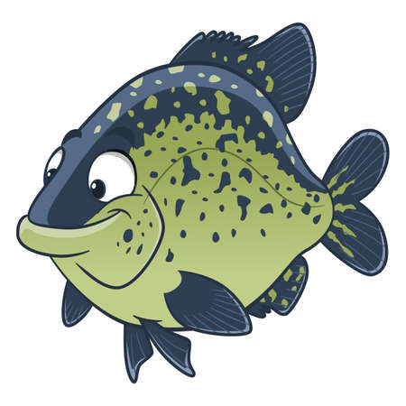 Cartoon black crappie fish. Freshwater fish