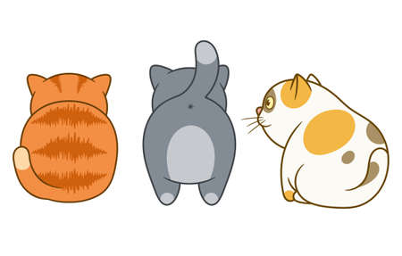 Cartoon three cute and funny cats