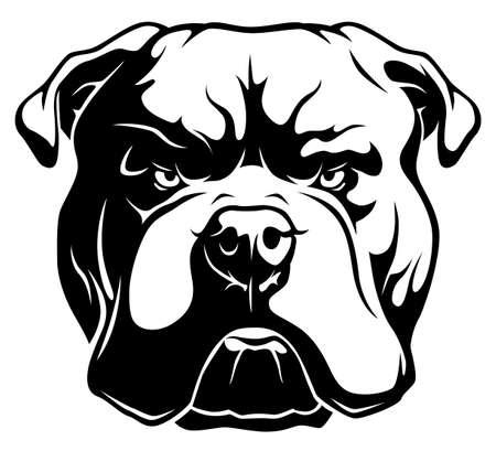 American bulldog black and white head illustration isolated on white background