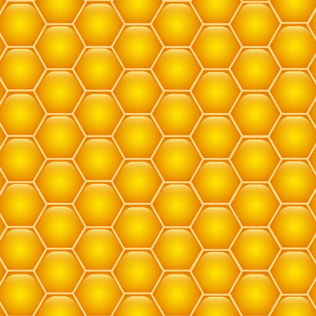 Honeycombs with honey. Background texture.