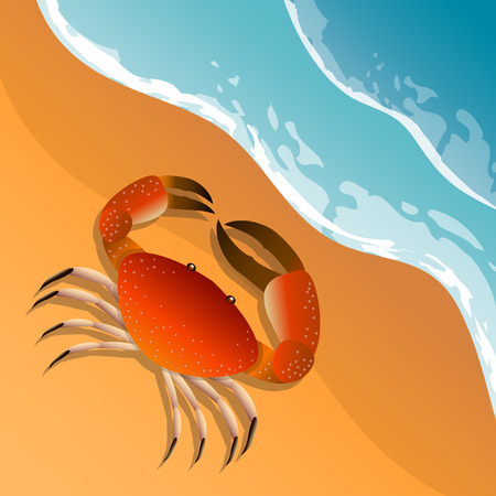 The illustration on a beach theme. Summer vacation by the sea. The crab on the sand. Sea surf .