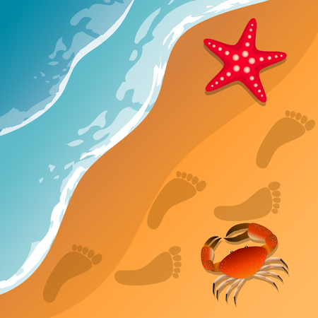 Illustrations at the beach theme. Summer vacation by the sea. Crab and starfish on the sand. Sea surf .