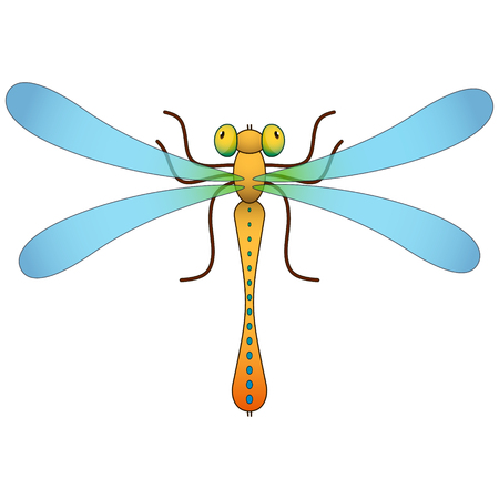 Dragonfly. Colored cartoon Isolated object Vector illustration