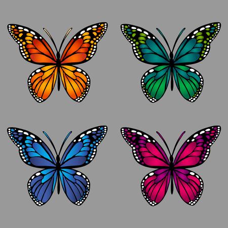 mariposas coloridas en fondo gris. ilustración del vector.