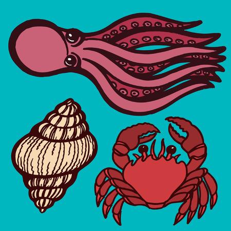 sucker: Marine inhabitants. Octopus, crab and shellfish. Isolated objects Vector illustration Illustration