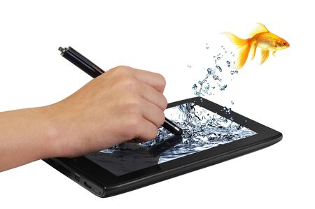 gold fish jumping pad tablet