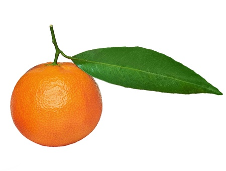 Mandarin isolated on white background Stock Photo - 17782968