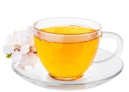 herbal tea: White cup of Tea and Apricot Flowers