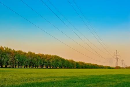 torres de alta tension: torres de energía y cables durante el día soleado Foto de archivo