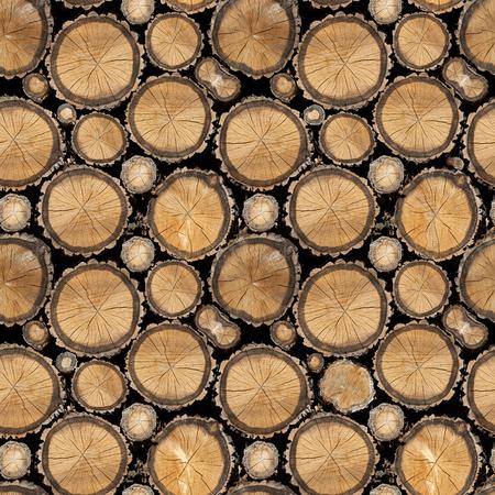 tree ring: Seamless wood texture of cut tree trunks