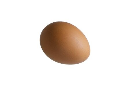 Brown egg closeup isolated on white background Banco de Imagens