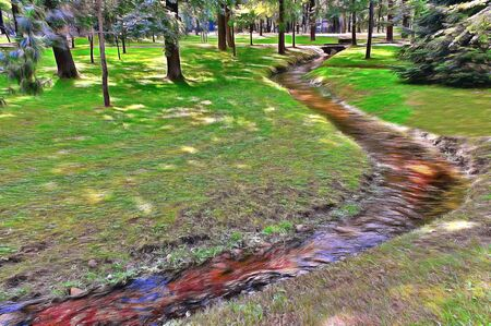 The stream flows in the park among the shadow of coniferous trees.