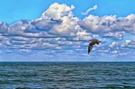 A seagull soaring above the sea surface under a blue sky with clouds