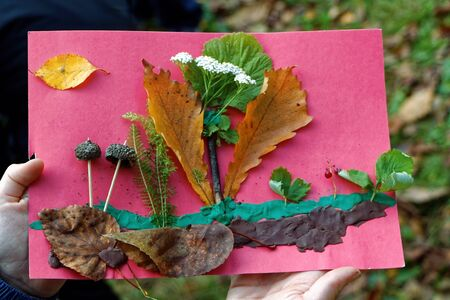 Childrens handicrafts made of plasticine and autumn leaves