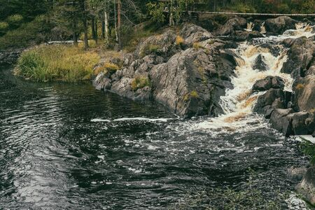 A small river in the Karelian forest. The waterfall between the stones whips up foam on the water. The rocks and trees.