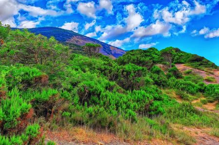 Beautiful multicolored summer nature. Hills with green vegetation. In the background, a high mountain. Blue sky with lots of thick clouds. Digital painting. Banco de Imagens