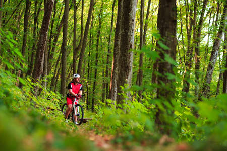 Biker on the forest road riding outdoor in sunny summer day Imagens - 48933851