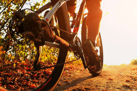 Mountain Bike cyclist in action. Low angle close up view. Stockfoto