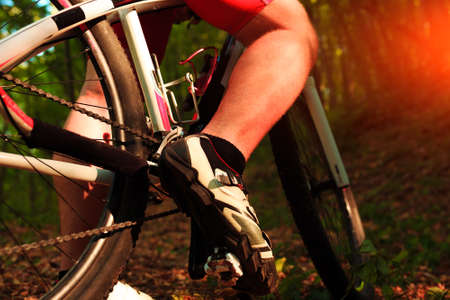 trail bike: low angle view of cyclist riding mountain bike on rocky trail at sunrise