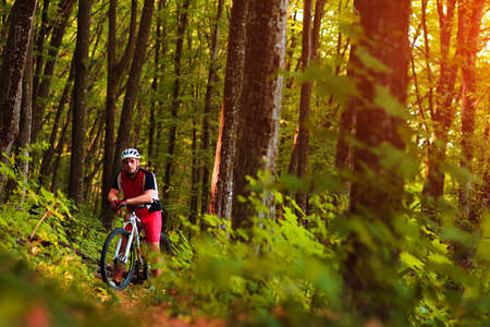 trail bike: Rider in action at Freestyle Mountain Bike Session Stock Photo