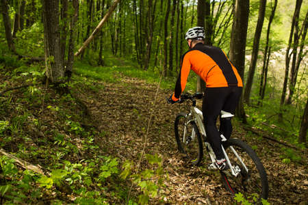 mountain bicycling: Cyclist Riding the Bike on the Trail in the Beautiful Spring Forest
