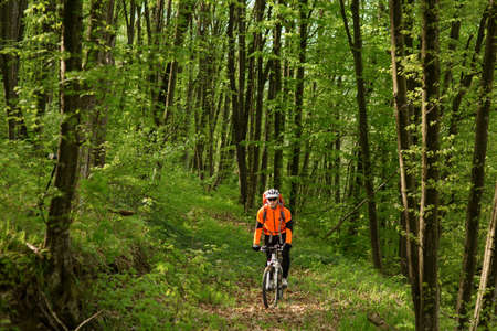 single track: Biker on the forest road on single track Stock Photo