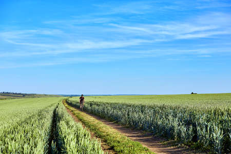 Attractive one cyclist on mountainbike on path near green fields in the countryside in the summer season. Stockfoto