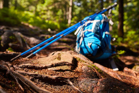 green couch: Travel backpack on the wooden bench in the forest. Outdoor wanderlust items. Travel, tourism and camping equipment. Stock Photo