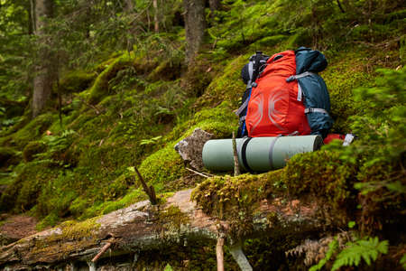 Travel backpack on the wooden bench in the forest. Outdoor wanderlust items. Travel, tourism and camping equipment.