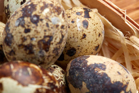 Spotted quail eggs arranged in rows in a box on a rustic wooden background, top view, selective focus, shallow depth of field. Some copy space tor your inscription. Textured background emphesize the still life. Healthy lifestyle concept.