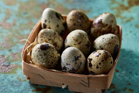 Spotted quail eggs arranged in rows in a box on a blue textured background, top view, selective focus. Some copy space tor your inscription. Textured background emphesize the still life. Healthy lifestyle concept.
