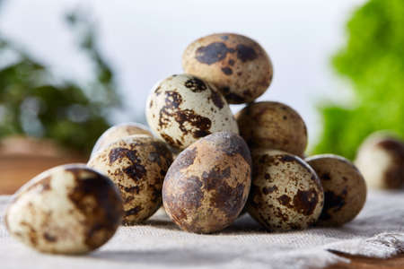 Quail eggs arranged in pyramid on a homespun napkin over a wooden table, close-up, selective focus. Conceptual Easter still life. Decorative rural composition. Healthy eating. Easter background. Healthy food concept. Stock Photo