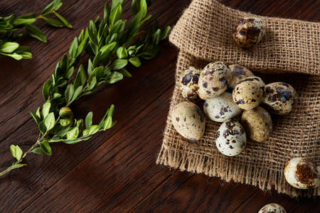 Quail eggs arranged in pyramid on a napkin with boxwood branches over a wooden table, close-up, selective focus. Zdjęcie Seryjne