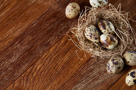Conceptual still-life with fresh raw spotted quail eggs in hay nest over dark wooden background, close up, selective focus. Some copy space for your text. Decorative rural fragile composition. Healthy eating. Easter background. Healthy food concept.